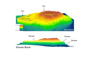 3-D representation of Dream Bank, a long-dead reef offshore South Texas.