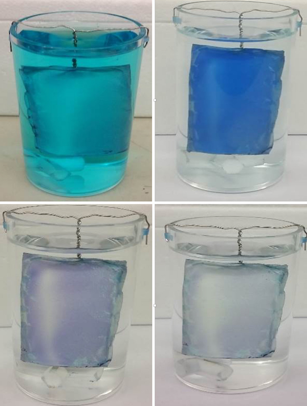 The Rice University-led NEWT Center created a nanoparticle-infused polymer mat that both attracts and destroys pollutants in wastewater or drinking water. A mat, top left, is immersed in water with methylene blue as a contaminant. The contaminant is then absorbed at top right by the mat and, in the bottom images, destroyed by exposure to light. The mat is then ready for reuse. (Credit: Rice University/NEWT)