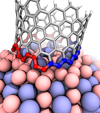 This illustration shows the interface between a growing carbon nanotube and a cobalt-tungsten catalyst. The atomic arrangement of the catalyst forces the nanotube to quickly transition from zigzag (blue) to armchair (red), which ultimately grows a nanotube that's neither one nor the other, but nearly in the middle. The transition is a previously undiscovered characteristic of carbon nanotube growth. (Credit: Evgeni Penev/Rice University)