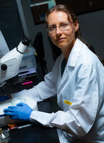 Rice University bioscientist Natasha Kirienko has won a major National Institutes of Health grant to study protective biological pathways in mitochondria. Photo by Jeff Fitlow