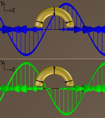 Circularly polarized light delivered at a particular angle to C-shaped gold nanoparticles produced a plasmonic response unlike any discovered before, according to Rice University researchers. When the incident-polarized light was switched from left-handed (blue) to right-handed (green) and back, the light from the plasmons switched almost completely on and off.