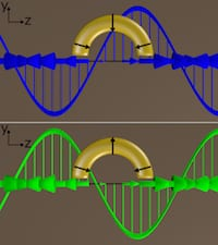 Circularly polarized light delivered at a particular angle to C-shaped gold nanoparticles produced a plasmonic response unlike any discovered before, according to Rice University researchers. When the incident-polarized light was switched from left-handed (blue) to right-handed (green) and back, the light from the plasmons switched almost completely on and off. (Credit: Link Research Group/Rice University)