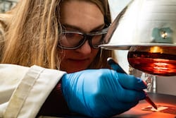 Rice University graduate student Morgan Barnes monitors a sample of a shape-shifting polymer that can be molded into a shape that appears when cooled and flattens when heated. (Credit: Jeff Fitlow/Rice University)