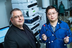 Rice University researchers László Kürti, left, and Zhe Zhou led an effort to develop a one-step method that allows nitrogen atoms to be added to precursor compounds used in the design and manufacture of drugs, pesticides, fertilizers and other products. (Credit: Jeff Fitlow/Rice University)