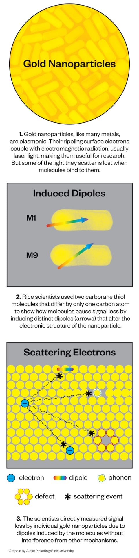 Illustration shows how scientists measure signal loss by plasmonic gold nanoparticles by attaching molecules that create damping on the surface.