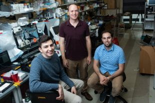 Rice University bioengineers Bagrat Grigoryan, Jordan Miller and Daniel Sazer