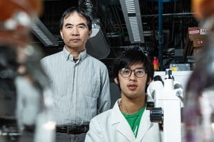 Rice University physicists Pengcheng Dai and Tong Chen