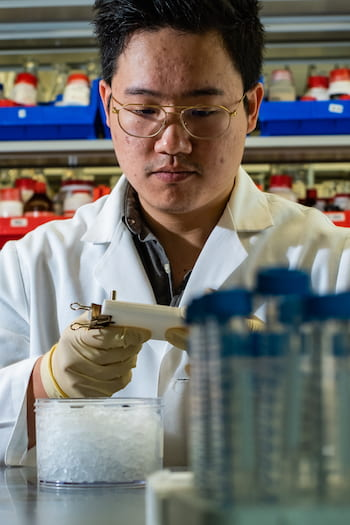 Rice University graduate student Jason Guo fills a mold with bioactive hydrogel. Injectable hydrogels can be enhanced with biomolecules and mixed at room temperature to help heal a variety of wounds. (Credit: Jeff Fitlow/Rice University)