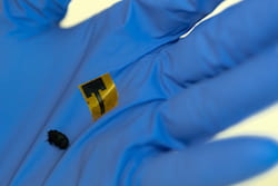 Metal-free antennas made of thin, strong, flexible carbon nanotube films are as efficient as common copper antennas, according to a new study by Rice University researchers. (Credit: Jeff Fitlow/Rice University)