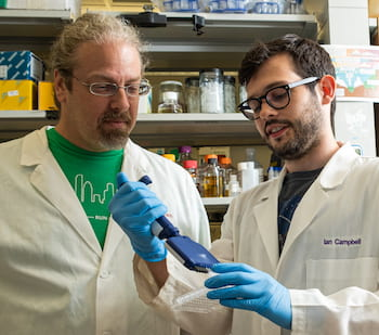 Rice University synthetic biologist Joff Silberg, left, and graduate student Ian Campbell harnessed ancient ferredoxin proteins in bacteria to improve control over electron transfer in the single-celled organisms. Their work in collaboration with Rutgers University scientists could have significant impact on processes that manipulate microbes to produce biofuels and other industrial products. (Credit: Jeff Fitlow/Rice University)
