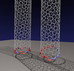 "Rice University researchers have determined that an odd, two-faced ""Janus"" edge is more common than previously thought for carbon nanotubes growing on a rigid catalyst. The conventional nanotube at left has facets that form a circle, allowing the nanotube to grow straight up from the catalyst. But they discovered the nanotube at right, with a tilted Janus edge that has segregated sections of zigzag and armchair configurations, is far more energetically favored when growing carbon nanotubes via chemical vapor deposition. (Credit: Illustration by Evgeni Penev/Rice University)"