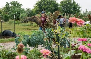 Service projects across the city included helping out on an urban farm.