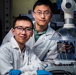 Rice University postdoctoral researcher Chuan Xia, left, and chemical and biomolecular engineer Haotian Wang. (Credit: Jeff Fitlow/Rice University)
