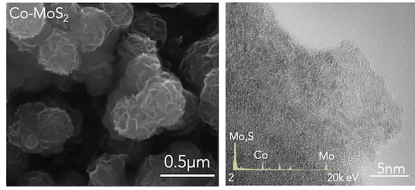 Microscope images show cobalt-doped molybdenum disulfide as grown on a carbon cloth. The high-resolution transmission electron microscope image at right reveals the doped nanosheets, which facilitate the efficient electrochemical catalysis of ammonia. The process was developed for small-scale use by materials scientists at Rice University. (Credit: Lou Group/Rice University)