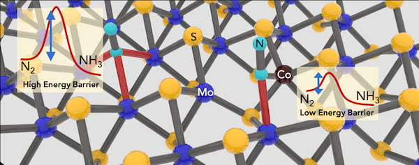 "The addition of cobalt atoms to fill vacancies in 2D molybdenum disulfide crystals enhances the material's ability to catalyze ammonia from dinitrogen. Rice University scientists have developed a ""green"" method for the small-scale synthesis of ammonia that uses less energy and produces less carbon dioxide than industrial processes. (Credit: Lou Group/Rice University)"
