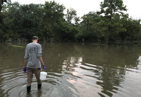 Rice graduate student Seth Pedersen collects a water sample near Cypress Creek. A task force at the university is looking for ways to coordinate collaborative environmental research. Photo by Qilin Li