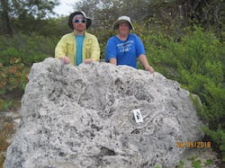 Gulf of Mexico coral reefs may only be saved by a dramatic reduction in greenhouse gas emissions beyond those called for in the Paris Agreement, according to Rice University-led research. Here, co-author Kristine DeLong and a colleague stand behind a fossilized coral reef boulder dating back to the last interglacial that washed ashore on Little Cayman. (Credit: Courtesy of Kristine DeLong, Louisiana State University)