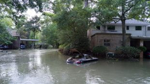 Hurricane Harvey flooding of homes and cars.