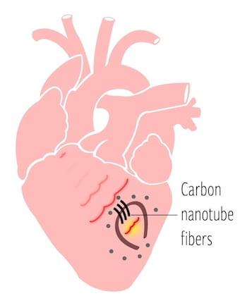 Heart nanotube fiber graphic