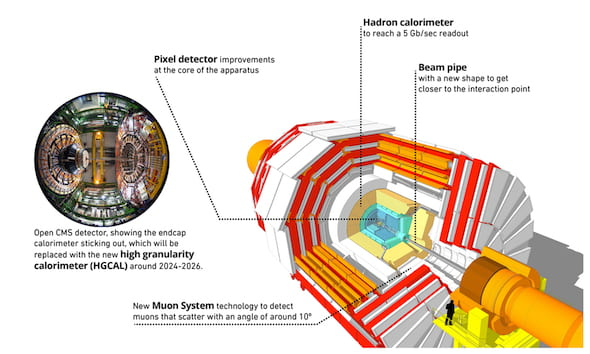 A graphic look at the Compact Muon Solenoid (CMS), part of the Large Hadron Collider. CMS detects the speed and paths of particles emitted by colliding protons. The detectors record and transmit the data that scientists later parse for evidence of unique or unknown particles that could provide new knowledge about the universe. (Credit: CERN)