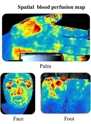 Three PulseCam maps showing blood flow to the face, hand and feet. Red indicates the most blood and blue the least.