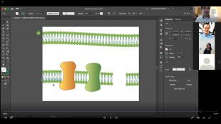 DMC supervisor Mario Norton teaches an Illustrator course via Zoom.