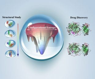 Illustration of CTBP's COVID-19 drug screening research