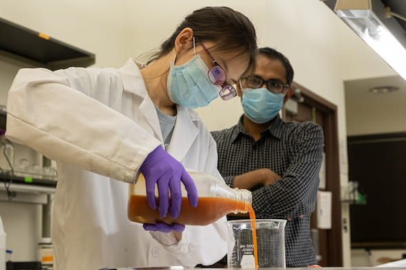 Rice University undergraduate student Yufei (Nancy) Cui prepares a solution based on protein from wasted eggs. The solution can be used as a coating that extends the freshness of fruit and vegetables. With her is Rice research scientist and mentor Muhammad Rahman. (Credit: Jeff Fitlow/Rice University)