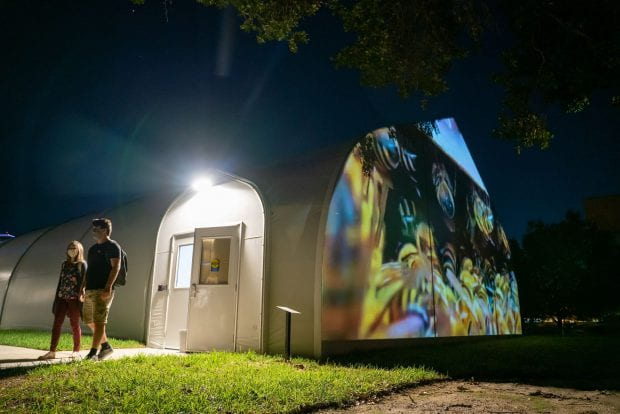 """Hive at Rice"" can be seen in a projection every evening through May 2021. (Photo by Brandon Martin)"