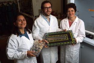 Pratiksha Dongare,Alessandro Alabastri和Oara Neumann