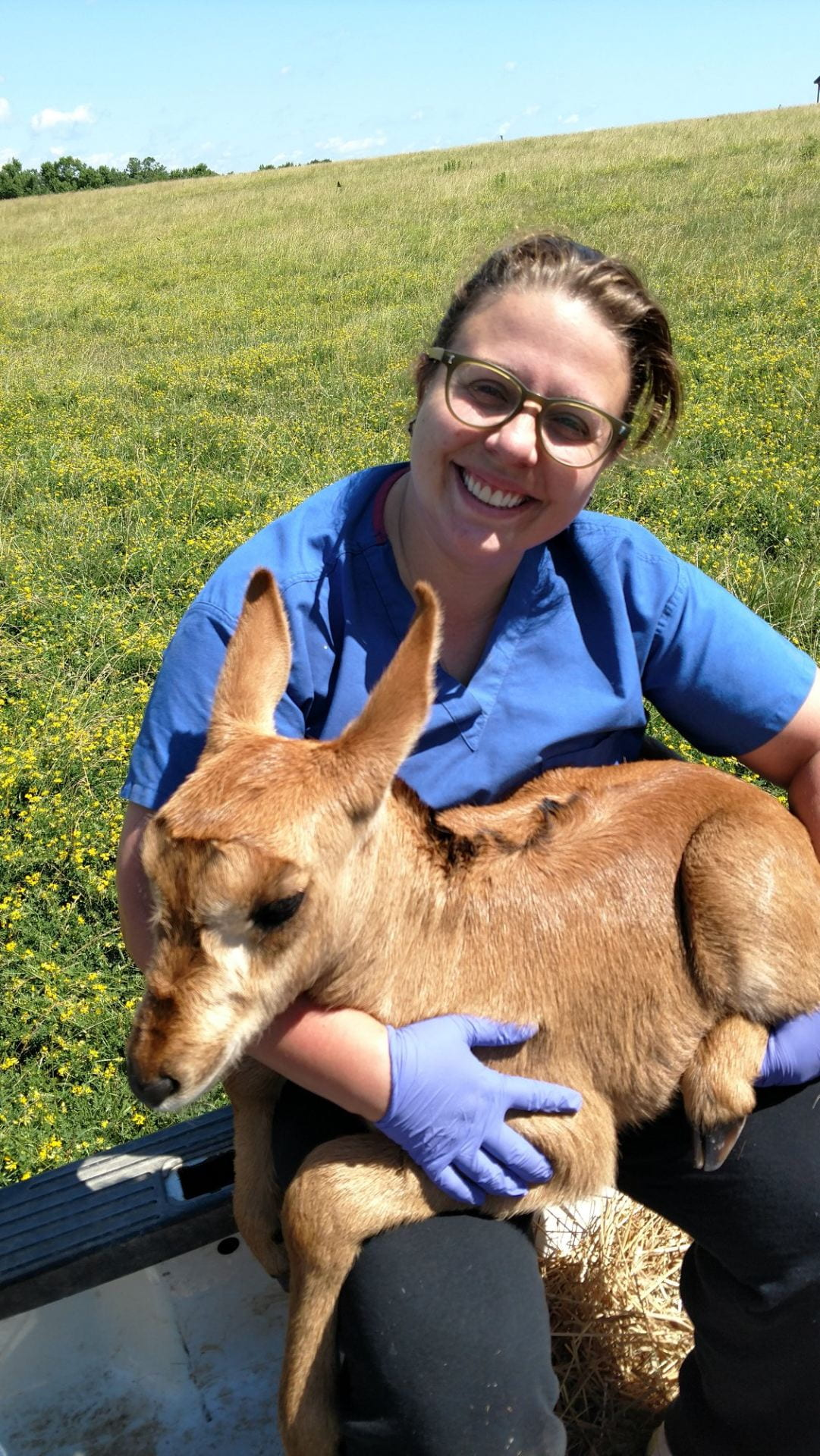 Speaker Bios - Zoo, Wildlife, and Conservation Medicine Club