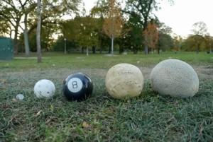 ball lineup