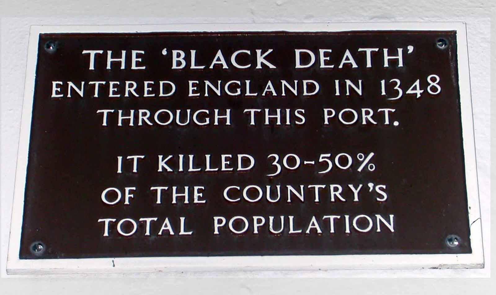 Essays on the black plague