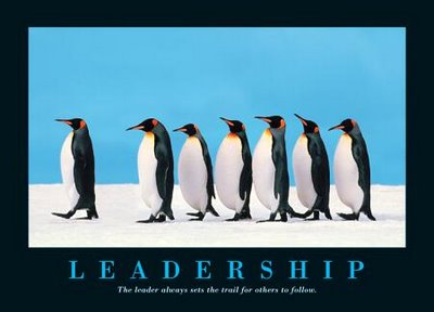 leadership penguin image