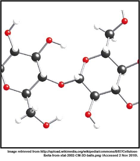 Figure 1: Structure of cellulose