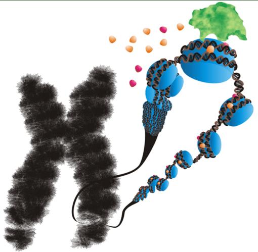 Tackling Genetic Disease: Past, Present, and Future