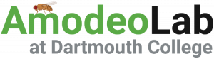 AmodeoLab