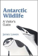 Antarctic Wildlife book