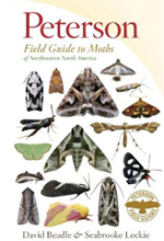 peterson guide to moths