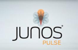 Junos Pulse VPN