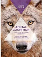 animal cognition
