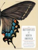 Butterflies-North-America
