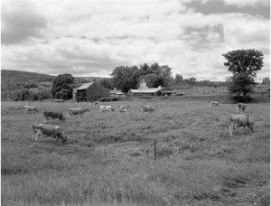 Abbot photo of Hartford Vermont Farm
