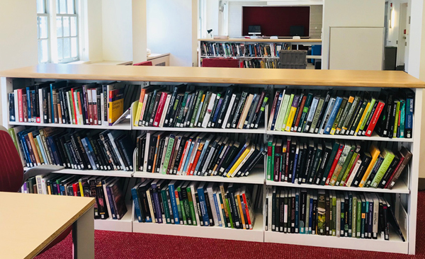 New Dana Book Shelves  Library Page