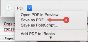 Option to Save as PDF in Mac print menu.