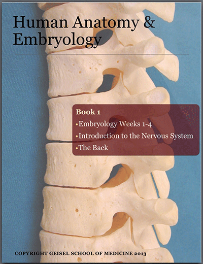 Human Anatomy and Embryology