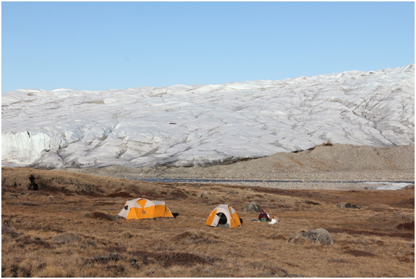 Sitting at our campsite, I am launching 75 temperature loggers in order to track soil and ambient air temperatures as the Arctic transition from spring to summer (Photo credit: Melissa DeSiervo).