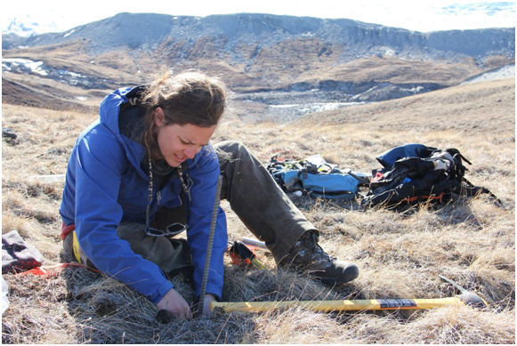 Here I am installing temperature loggers and site markers for one of my study sites (Photo credit: Melissa DeSiervo).