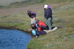 Ayres teaching - greenland