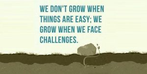 Motivational Picture of a Plant Growing. Caption: We don't grow when things are easy, we grow when we face challenges.